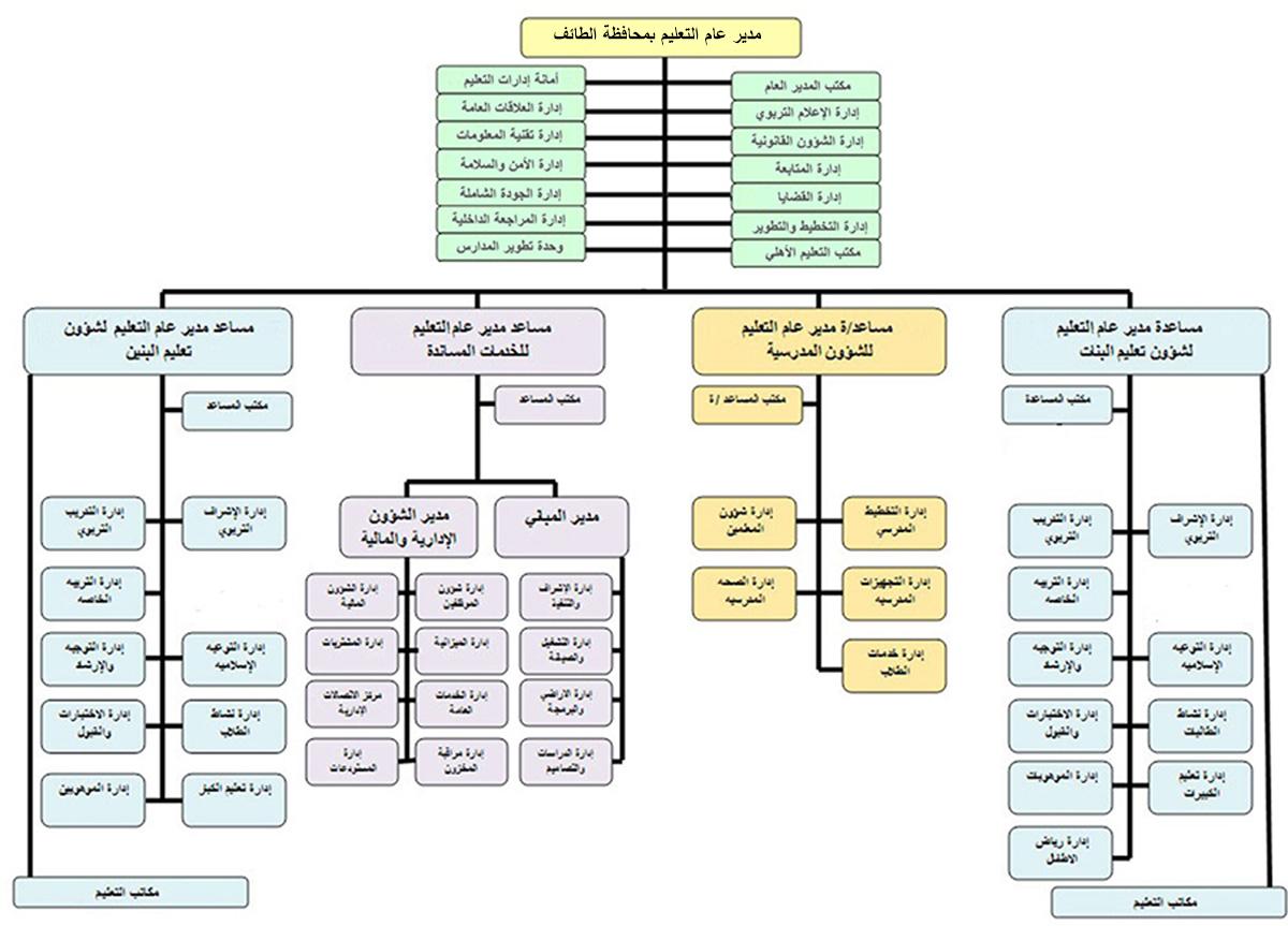 كتاب التنظيم الإداري pdf